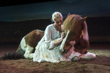 Icelandic Horse Theater and Northern Lights